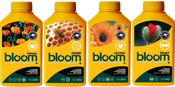 Because Our Bloom Products Are In Such High Demand And Praise Generate Rapid Cost Effective Value Results Beware Of Clone Imitators On The